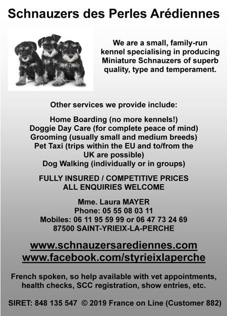 Schnauzers des Perles Aredienne,kennel,English,French,minature schnauzers,home boarding,no kennels,dog day care,grooming,pet tax,eu,europe,uk,dog walking,Saint Yrieix la Perche,Haute Vienne,Limousin